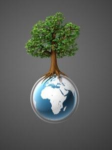 environmental earth and tree