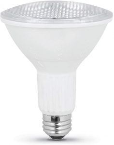 long neck bulb