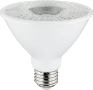 short neck bulb