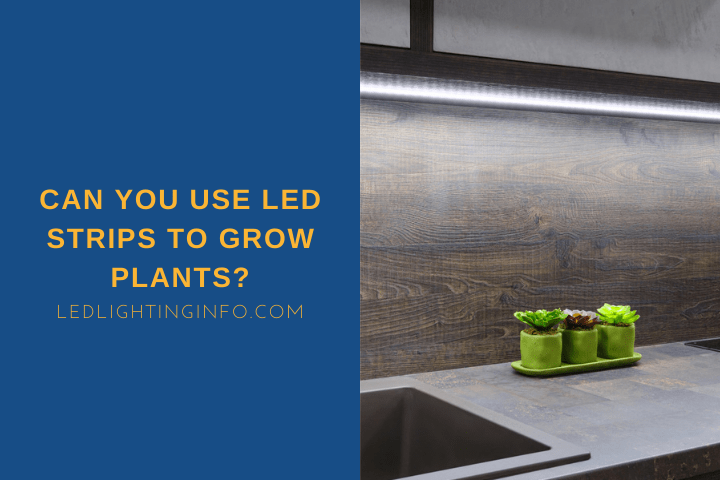 Can You Use LED Strips To Grow Plants?